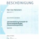 Heinzmann2